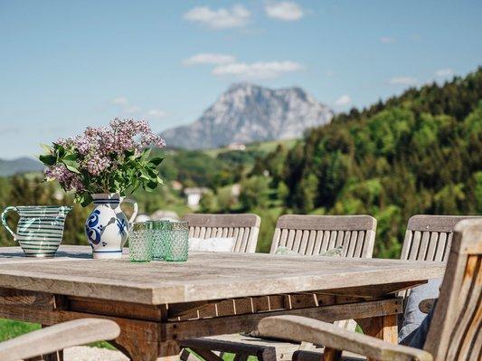Blick vom Garten auf den Traunstein