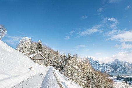 Entspannen Sie bei einer Wanderung durch die Schneelandschaft