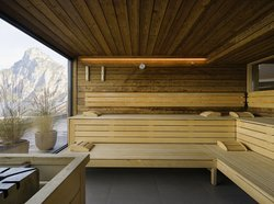 Panorama sauna with lake view in the SeeSpa