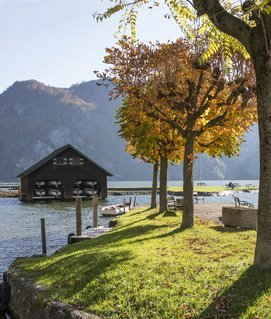 Enjoy the autumn mood at the Traunsee